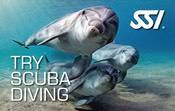 SSI-Try-Scuba-Diving