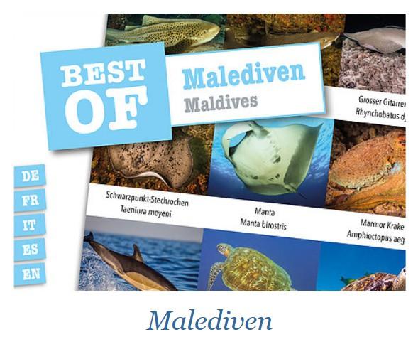 DIVE-STICKER MALDIVES