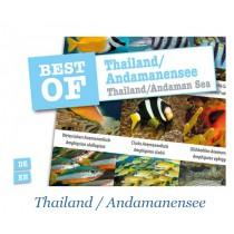 DIVE-STICKER THAILAND