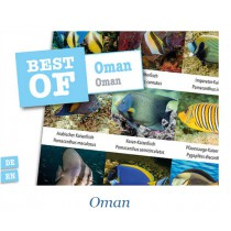 DIVE-STICKER OMAN